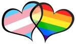 trans hearts
