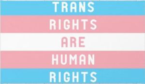 trans-rights-are-human-rights-rugs